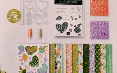 Blühender Kaktus – Produkt-Medley